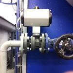biomasa-lavand-polarier-IMG_2103