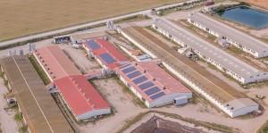 Instalación solar fotovoltaica de autoconsumo en la empresa Tauste Porcina