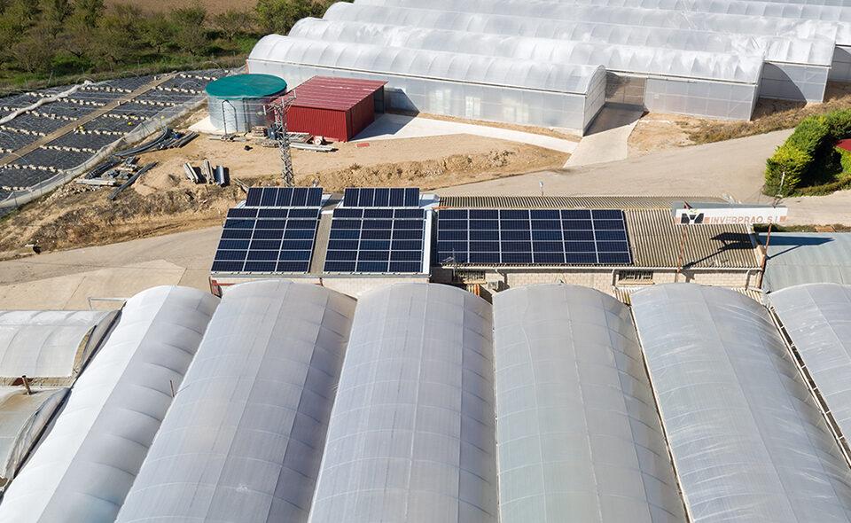 Instalación solar fotovoltaica de autoconsumo en empresa de flores y plantas