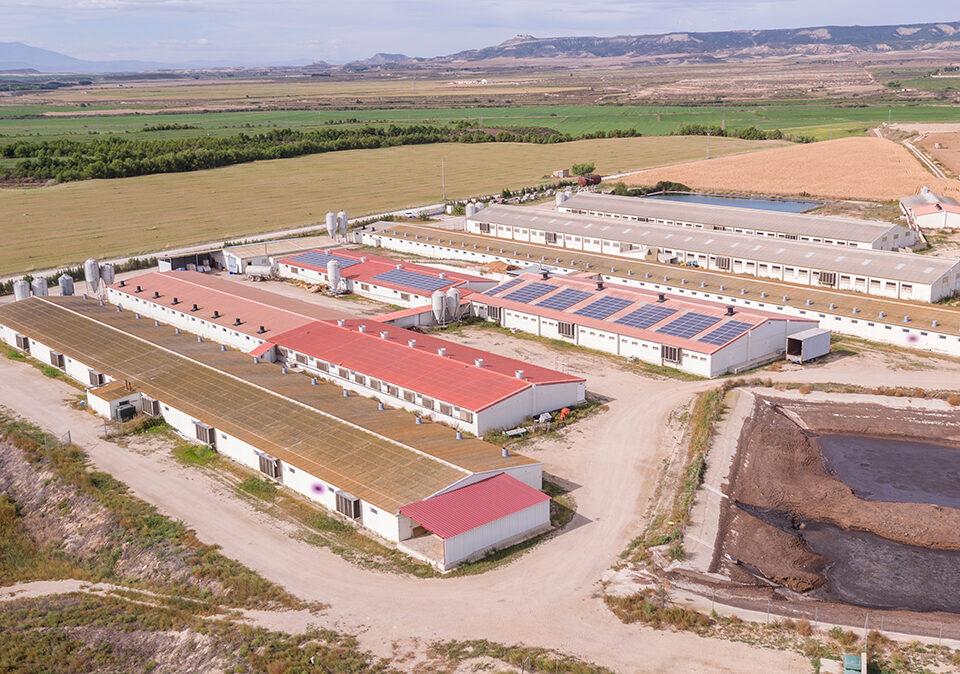 Instalación solar fotovoltaica de autoconsumo en empresa ganadera porcina en Zaragoza