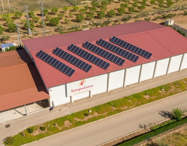 Instalación solar fotovoltaica de autoconsumo en empresa cárnica de La Rioja